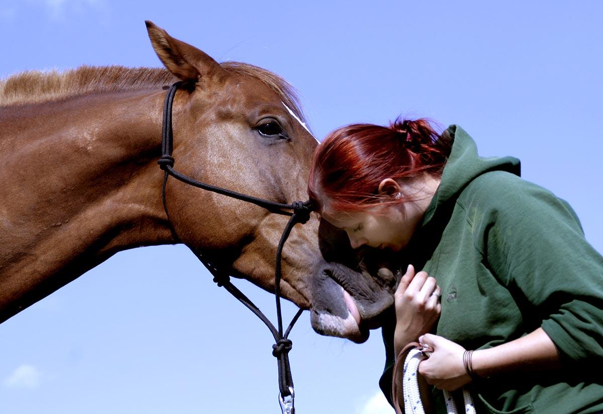 TILL e.V. Fachkräfte - Tiergestütztes Leben und Lernen