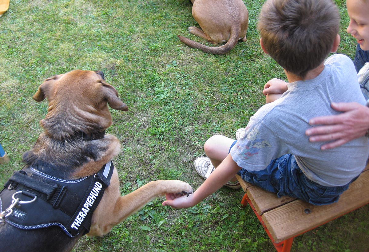 TILL e.V. Partner - Tiergestütztes Leben und Lernen