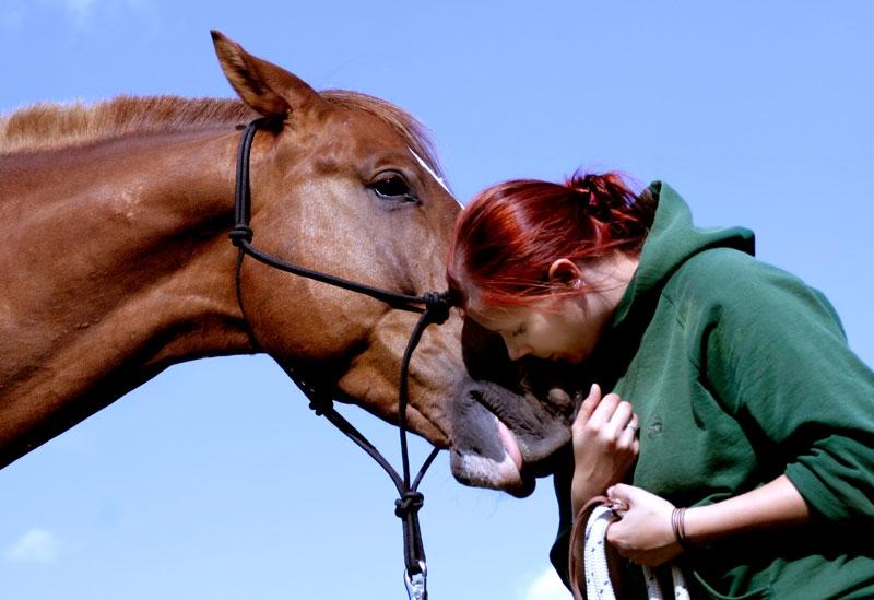 Fachkräfte - TILL e.V. - Tiergestütztes Leben und Lernen